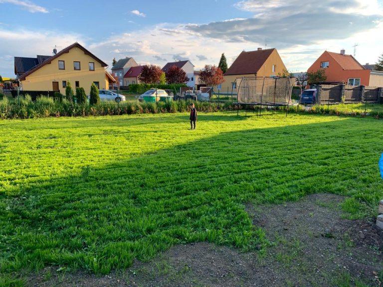 hnojení nového trávníku