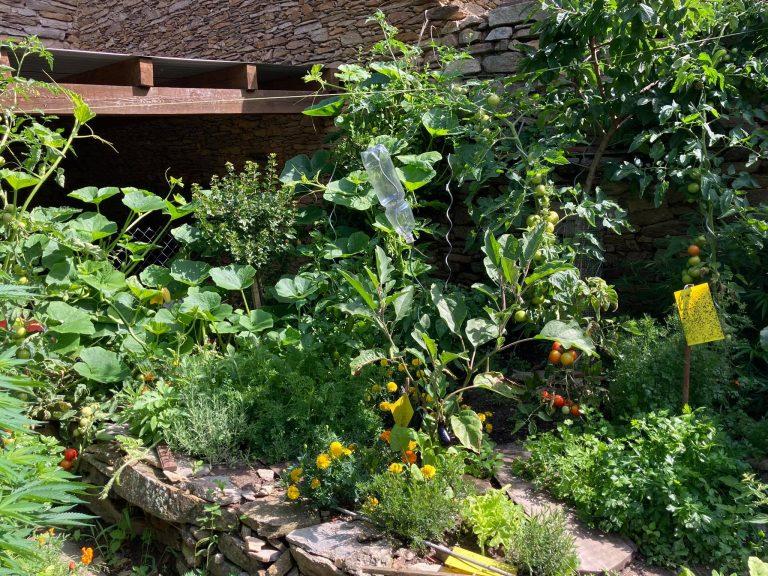 den Garten düngen
