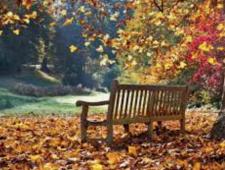 létoHnojení trávníku na podzim